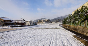 Small village with the fields at winter in Takayama, Japan Royalty Free Stock Images