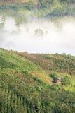 The small village in fog, some where near Dalat, Vietnam Stock Photo