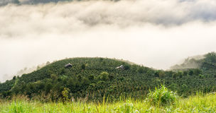 The small village in fog, some where near Dalat, Vietnam Royalty Free Stock Photography