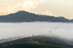 The small village in fog, somewhere near Dalat, Vietnmam. The small village in fog, some where near Dalat, Vietnam- DALAT Stock Photo
