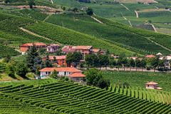 Small village among green vineyards. Royalty Free Stock Photography