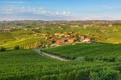Small village among green vineyards at sunset. Stock Photo