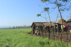 Small village hut in Terai, Sauraha, Nepal. Simple hut in the fields in Nepal. Farmers living in the flat lands in the south. Fields, meadows, landscape royalty free stock photos