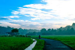 Small Village in Indonesia stock image