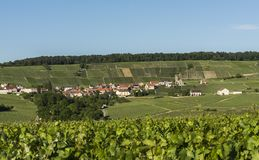 Leuvrigny Vineyards Vallee de la Marne. The small village of Leuvrigny in Champagne near Epernay with vineyards, France Stock Images
