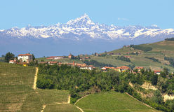 Small village and mountain peak on background in Italy. Small village on the hill with vineyards and Monviso alpine mountain peak covered with snow on Royalty Free Stock Photo