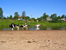 Small Village Near River