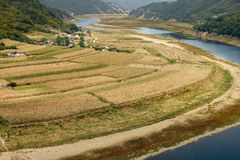 A small village near a riverside. Surrounded by rice field Royalty Free Stock Photography