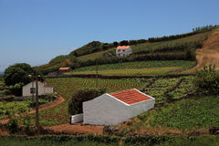 Small village in one Azores Island Royalty Free Stock Photography