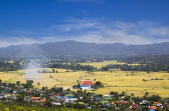 Small village and Rice Field in Chiangmai. Thailand stock photo