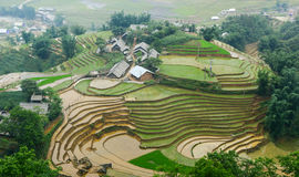Small village with rice fields in Lai Chau, Vietnam.  stock images