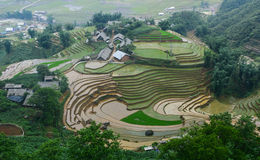Small village with rice fields at Sapa, Vietnam Stock Photography
