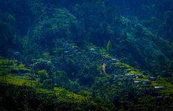 Small Village of Sikkim. View of a small village in the hilly region of sikkim near pelling Royalty Free Stock Image