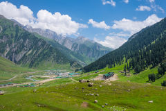 Small village at Sonamarg surrounded by mountain and forest, Jam Royalty Free Stock Images