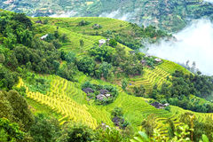 Small village on steppe terraces Royalty Free Stock Images