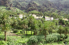 Small village in the Valle Gran Rey Stock Photography