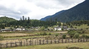 A small village in Xizang. A small Tibetan village on the Tibet Plateau Stock Image