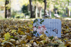 Small vintage suitcase in colorful autumn leaves. Colorful vintage suitcase for little girls standing among fallen autumn leaves in park Royalty Free Stock Image