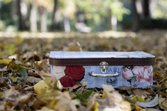 Small vintage suitcase in colorful autumn leaves. Colorful vintage suitcase for little girls standing among fallen autumn leaves in park Royalty Free Stock Images
