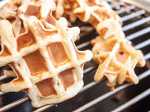 Small waffles isolated on grill Royalty Free Stock Photo