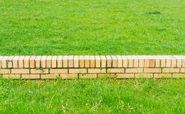 Small wall green grass Royalty Free Stock Photos