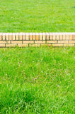 Small wall green grass Royalty Free Stock Photography