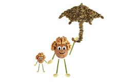 Small walnut and child standing under umbrella. Royalty Free Stock Photography
