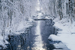 Small water channel in dreamlike snowy forest Royalty Free Stock Photos