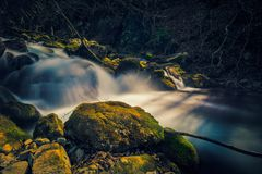 Small water drop from a mountain river flowing through rocks in a forest in the early days of spring.  royalty free stock photos