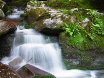 Small Water Fall Royalty Free Stock Photography