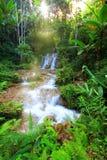 Small water fall in Chiangmai, Thailand stock photo