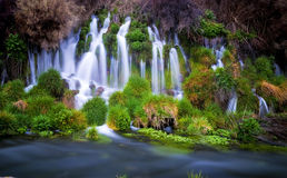 Small Water Fall and green foliage Stock Photo