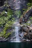 Small water fall in the Milford Sound Stock Photos