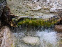 Small water fall over the old log. Dolomite Alps, Italy Royalty Free Stock Photos