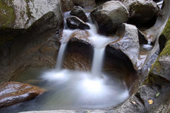 Small Water Falls. Picture of a small stream with some water falls Royalty Free Stock Photography