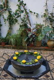 Small water fountain in the Carmen, old arabic house, Cordoba, Spain Royalty Free Stock Image