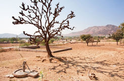 Small water pump in the desert with a lone tree Stock Photo