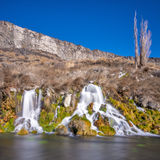 Small water from a spring in the desert of Idaho Royalty Free Stock Photo