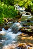 Small water stream on sunny day. Lovely summer nature scenery Stock Images