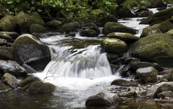 Small waterfall. In a forest stream Stock Photo