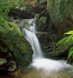 Small Waterfall. Mountain waterfall with mossy rocks Stock Photography
