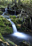 Small waterfall. Stock Image