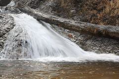 Small waterfall. In deep forest Royalty Free Stock Images