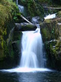 Small Waterfall. A small waterfall flows into a forest stream royalty free stock images