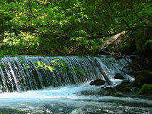 Small waterfall. In the woods, Kamniška bistrica Stock Photography