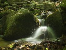 A small waterfall. Small waterfall in forest royalty free stock photography