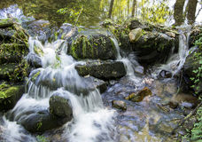 Small waterfall. In the forest Stock Photo