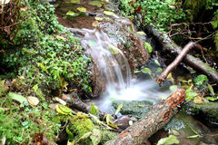 Small waterfall. Close up of a brook in wales Royalty Free Stock Photography
