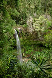 Small waterfall in Amber mountain national park Royalty Free Stock Photography