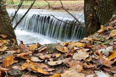 Small waterfall in autumn. Capture of a small beautiful waterfall behind fallen autumn leaves Stock Photography